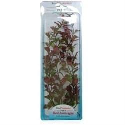 Растение 15см Людвигия красная Tetra (270299) - фото 11513