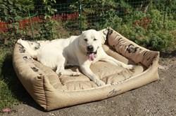 Лежанка квадратная 100х80х21см JOY золотая для собак - фото 5413