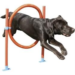 """Снаряд для аджилити """"Обруч"""" для собак (СА1243) - фото 7407"""