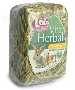 Сено 250г Lolo Pets для грызунов(LO-71040) - фото 7512